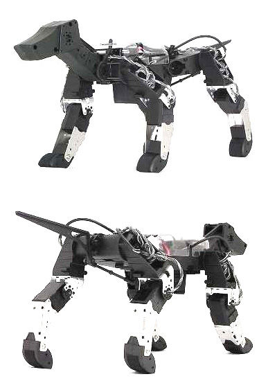 91 Animal-Inspired Robots