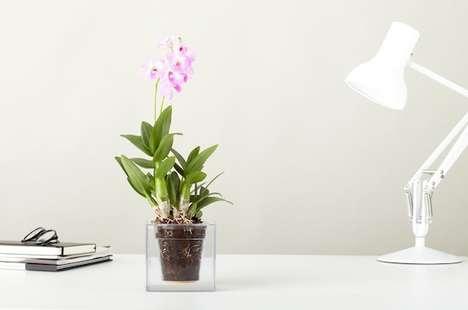 Clear Boxy Flower Pots