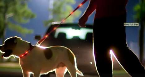 LED Dog Collars - Dog-E-Glow Lights up Your Pooch at Night