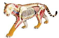 Anatomical Animal Models - 4D Vision Has Created Educational Anatomical Models of Various Animals