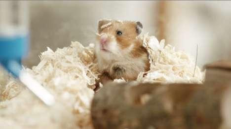 Humorous Hamster Commericals