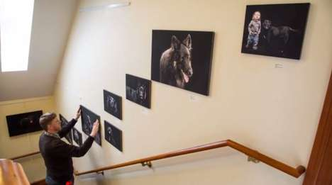 Superstitious Dog Photography