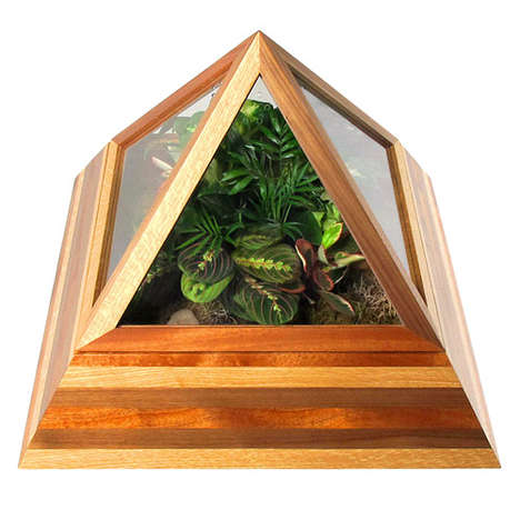 Lush Indoor Gardening Terrariums