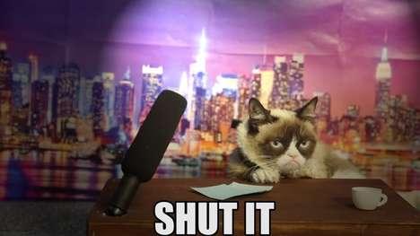Miserable Feline Host Auditions