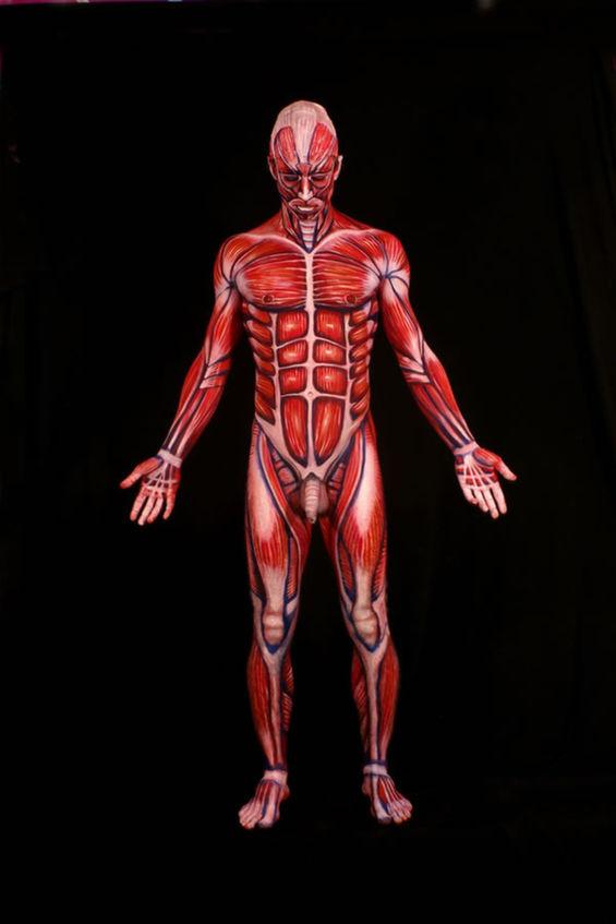 Anatomically Correct Body Art Body Painter Johannes Stoetter