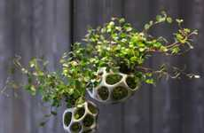 Skeletal Plant Holders - CELLA by ecoid Can be Mounted on Walls or Made to Stand Alone