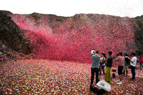 Volcanic Floral Campaigns