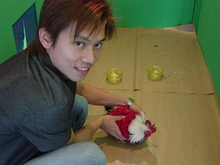 Virtual Chicken Petting