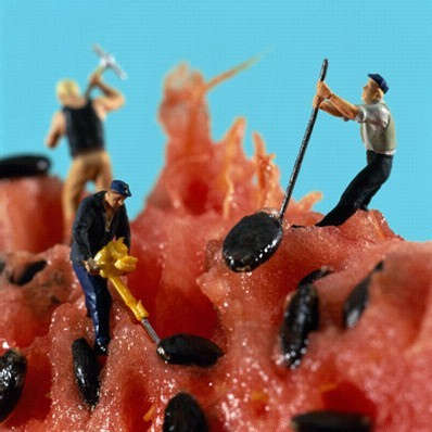 Edible Miniature Worlds - Tiny Food Landscapes