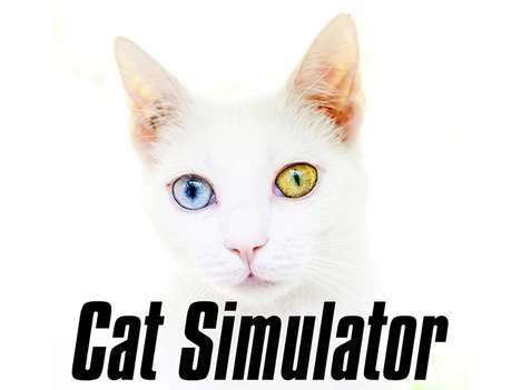 Feline-Friendly Games