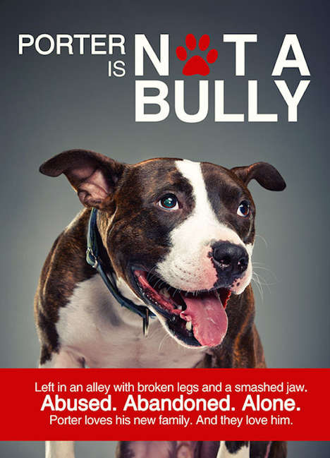 Anti-Bullying Canine Campaigns