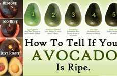Fruit Freshness Infographics - This Infographic Helps Tell If You're About to Eat a Ripe Avocado