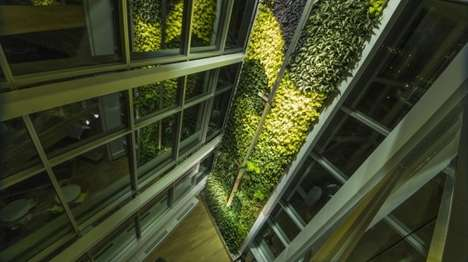 Towering Plant Walls