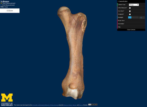 Online 3D Fossil Collections