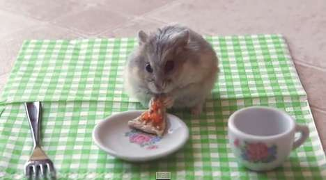 Adorable Rodent Meals