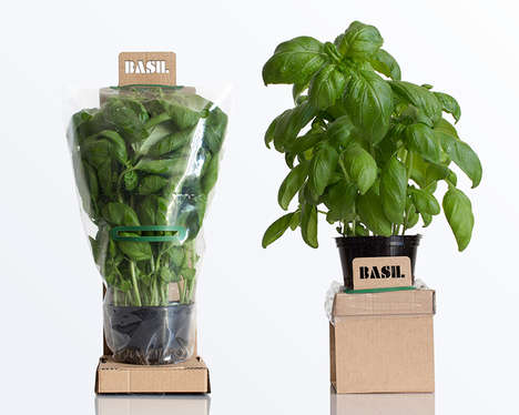 Self-Watering Packaging Designs