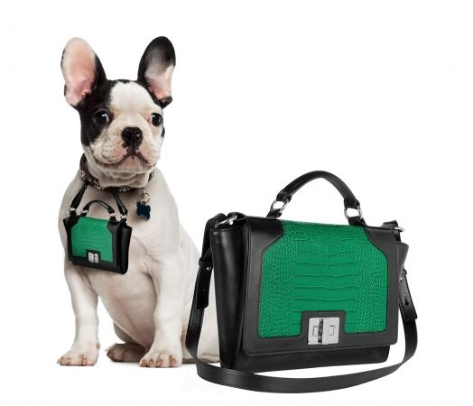 28 Luxe Pet Innovations