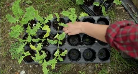 Job-Training Urban Farms