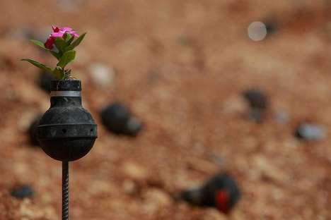 Tear Gas Grenade Gardens - This Palestinian Garden is Making Beauty Out of Chaos