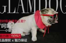 Chic Brand Spokesdogs - Glamour Sales' 'Glamdog' Became the Friendly Face of the Luxury Brand