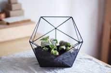 Transparent Geometry Planters - Etsy's Glass Terrarium Icosahedron is Both Decorative and Practical