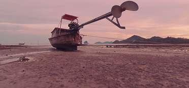 Explorative Island Videos