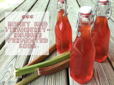 Fermented Fruit Sodas