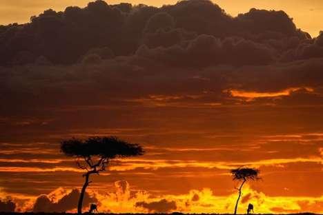 Saharan Sunset Photography
