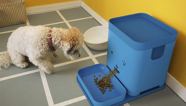 37 Examples of Pet-Targeted Tech