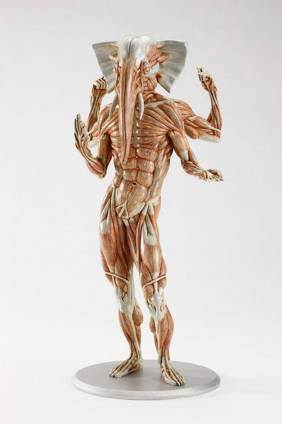 Mythical Musculature Sculptures