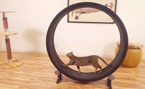 Cat Hamster Wheels