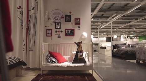 Furniture-Shopping Dog Adoptions