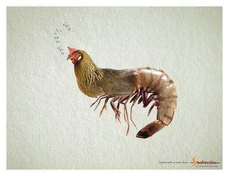 Animal Hybrid Ads - Smokaccino's Ads Combine Land and Sea Critters to Make Weird Animal Hybrids