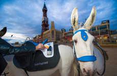 Contactless Payment Saddles - People Can Use Contactless Payments for Donkey Rides at this UK Beach