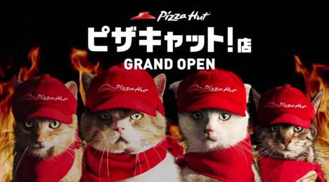 Cat-Operated Pizza Shops