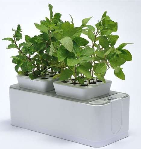Self-Watering Indoor Gardens - This Versatile Planter is Combined With a Hydroponics System