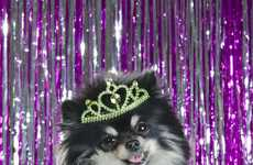 Canine Beauty Pageants - Sophie Gamand Features Dolled-Up Dogs in her 'Dog Pageant' Series