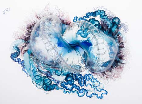 Stinging Sea Creature Photography