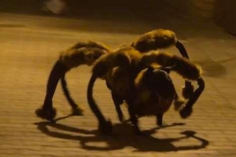 Scary Spider-Dog Pranks