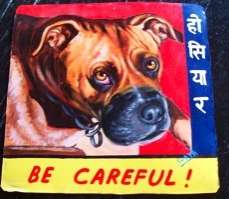 Danger Dogs Warning Placards