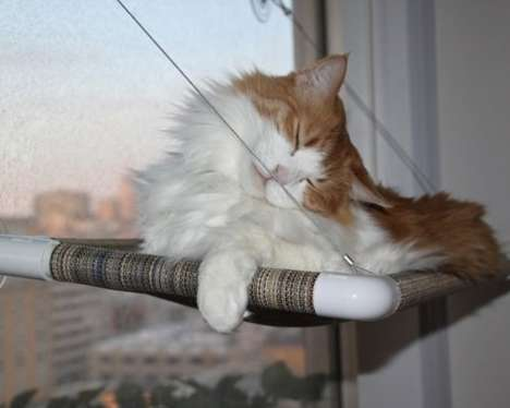 Feline Window Seats - This DIY Cat Window Perch Allows Kitty Cats to Comfortably Gaze Outdoors