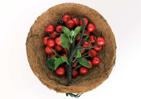 Organic Fruit Packaging - Nurture is a Living Fruit Bowl That Preserves Produce