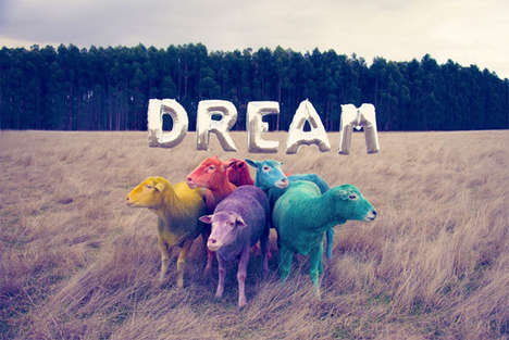 Candy-Colored Sheep Photography