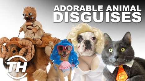 Adorable Animal Disguises