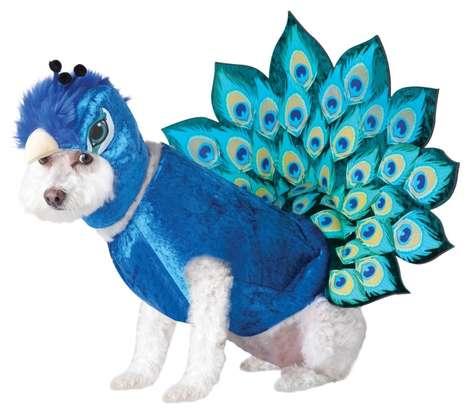 Pet Peacock Disguises