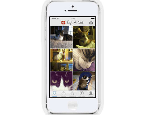 Cat-Loving Social Petworks - This Cat Photo Sharing App Lets You Connect With Other Feline Fanatics