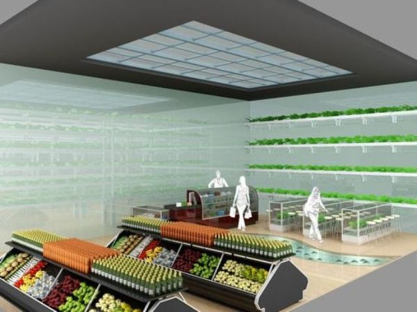 11 Health Food Store Innovations