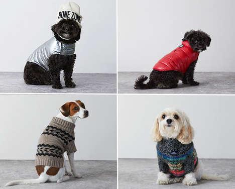 Designer Dog Fashion