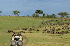Extravagant Safari Tours - This Costly Honeymoon Safari Tour Runs Upwards of $260,000