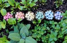 Wildflower Seed Bombs - Seedles' Colorful Seed Balls Aim to Revive the Bee Population
